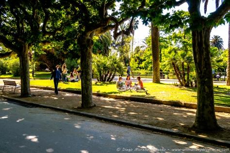 Relax en el parque.